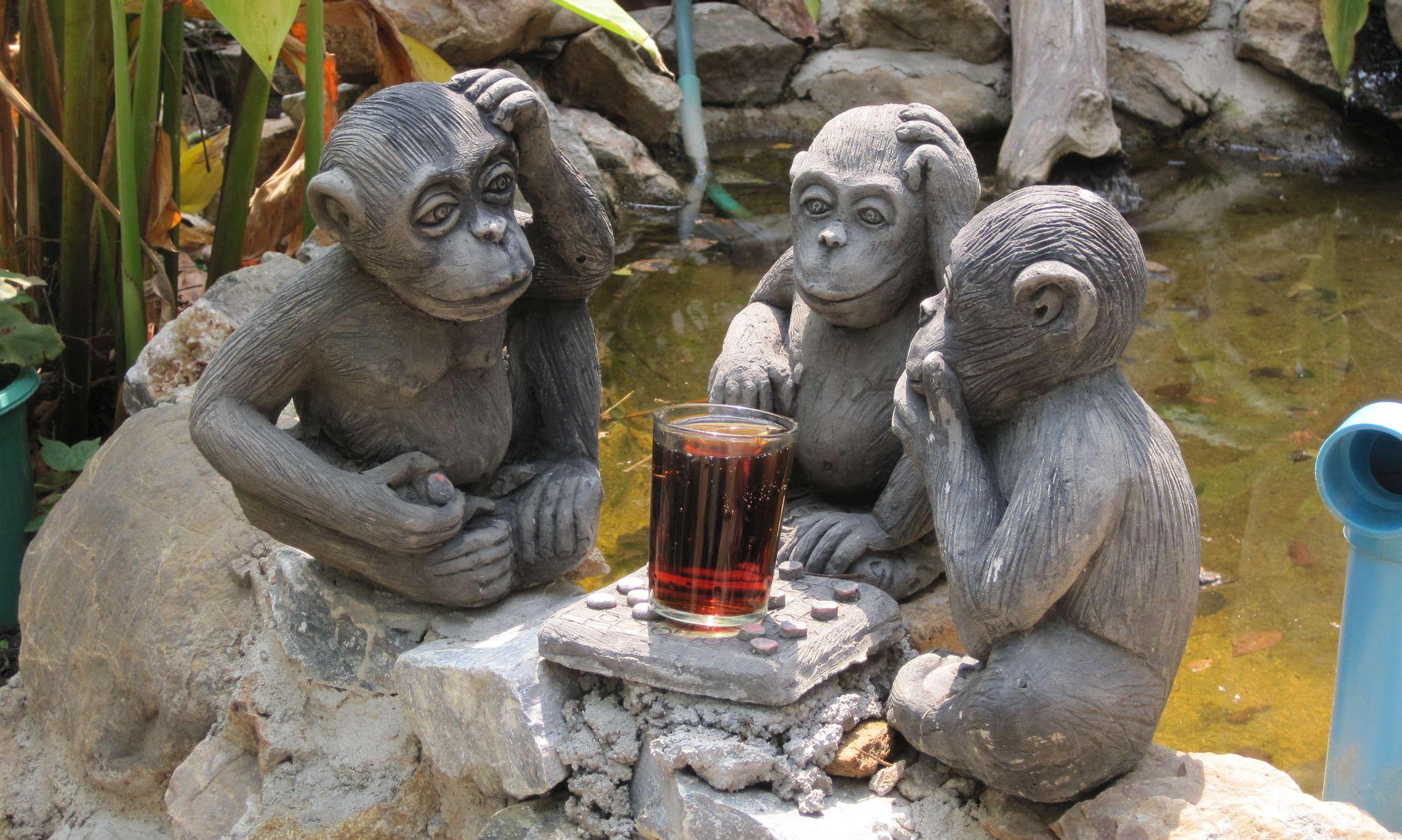 Integrity among monkeys